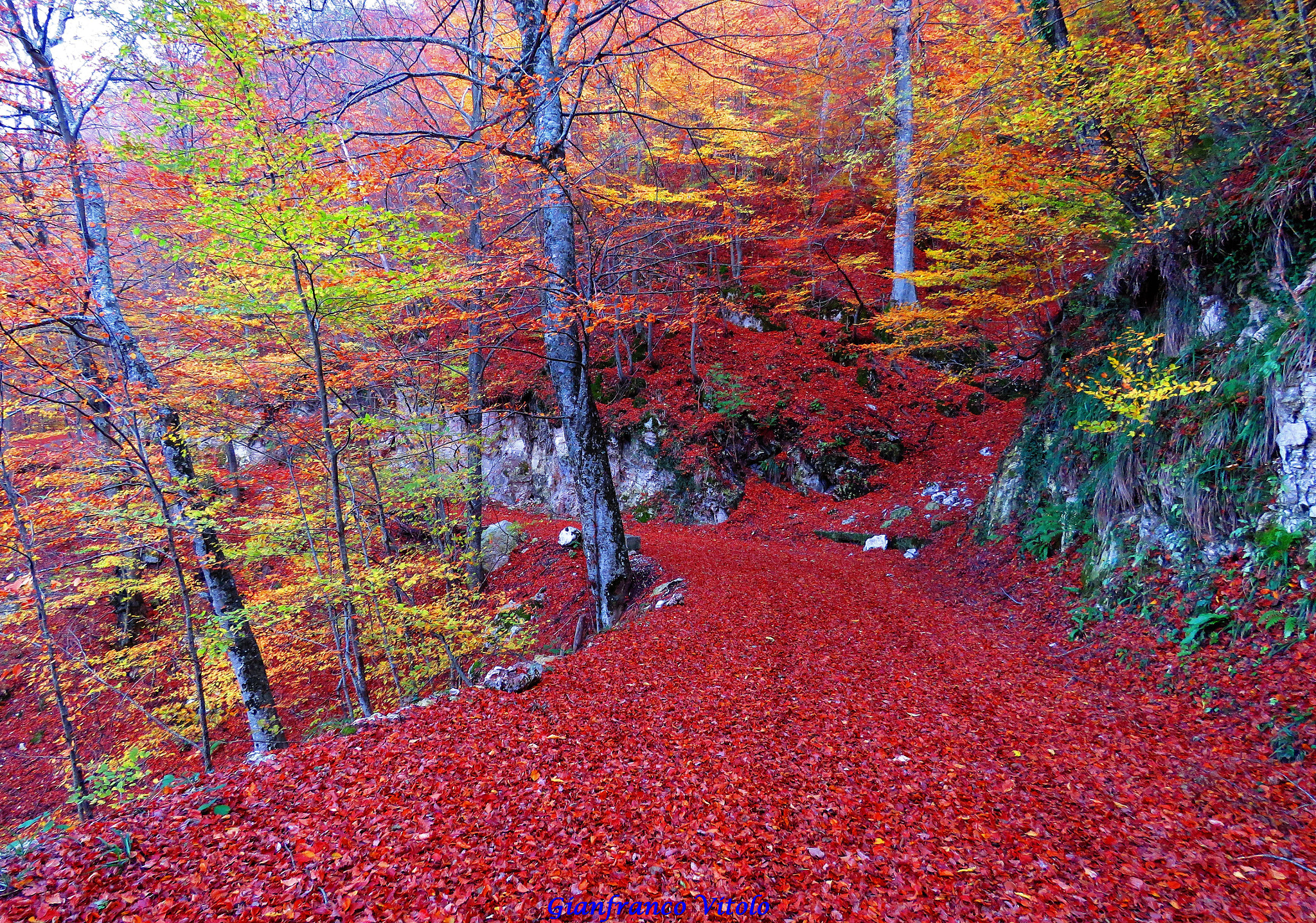 enchanted_autumn_in_south_italy_2823643042329